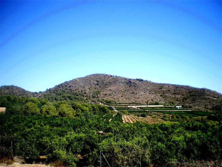 """Muntanya de Solaig a la que els soldats donaven el sobrenom de """"La Ballena"""". Terme de Betxí"""