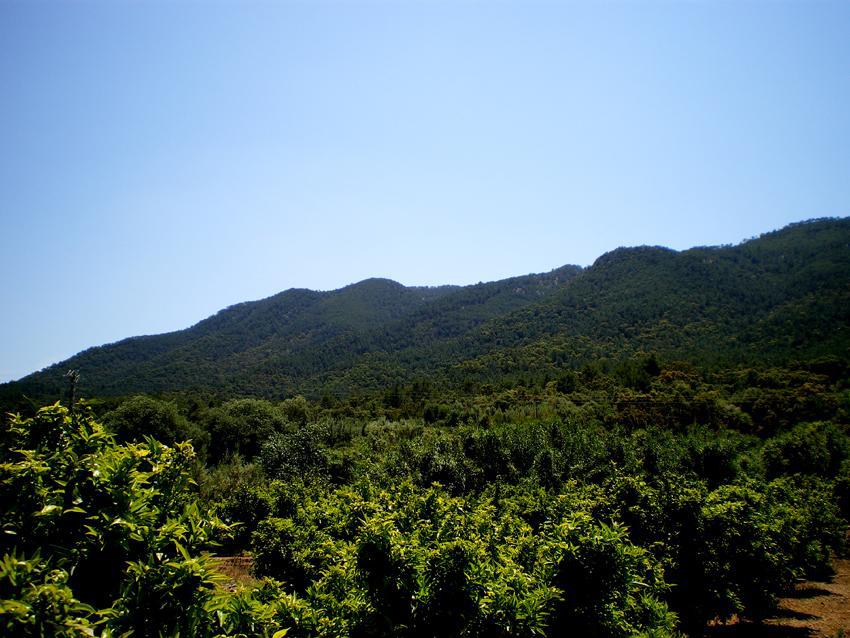 Vista parcial de l'Ombria d'Artana