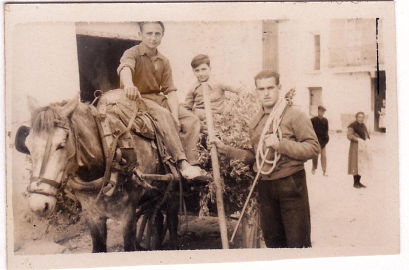"""José María Cabañez Ibáñez era conegut per molts com """"el Pesador"""". Ací el tenim en compliment de la seua feina, amb una gran gromana, cordes i un bastó per pesar una collita. Cap a l'any 50."""