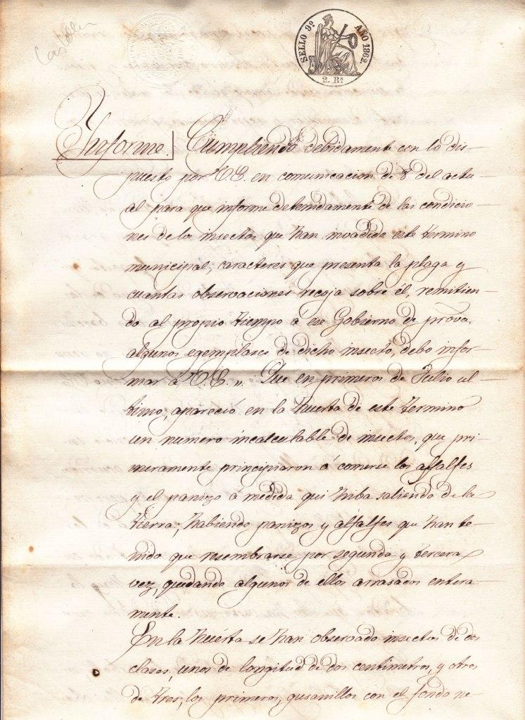 Informe1862-1