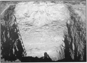 Fig. 13. Vista de la excavación