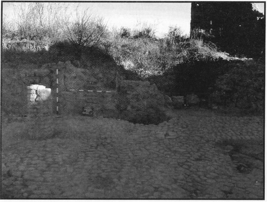 Fig. 18. Ventana y puerta de acceso al patio