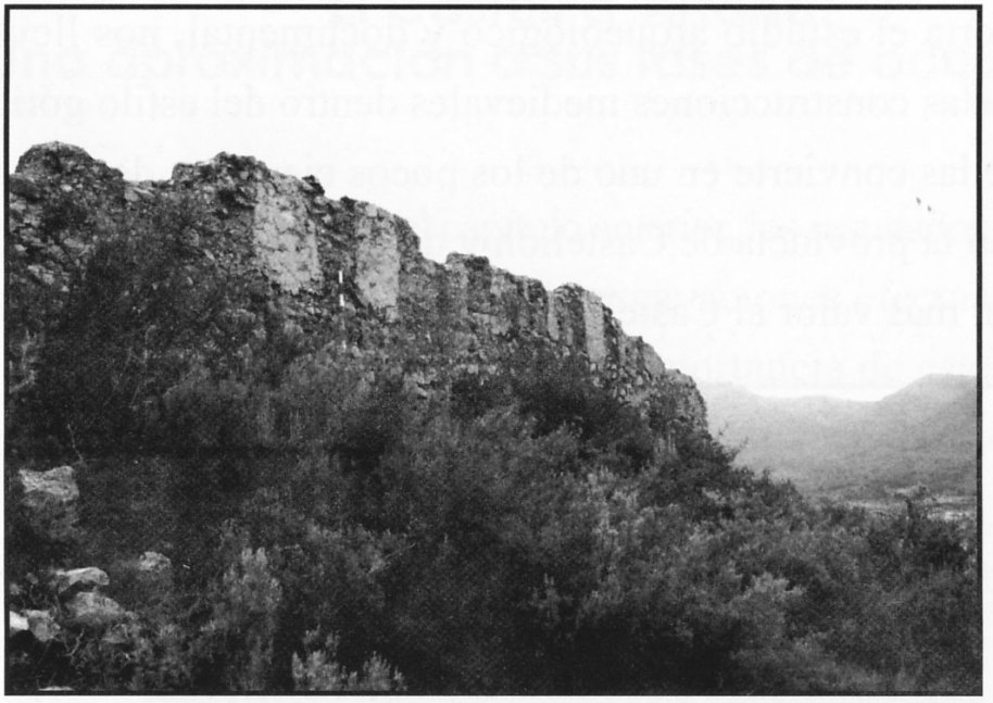 Fig. 27. Restos de muralla