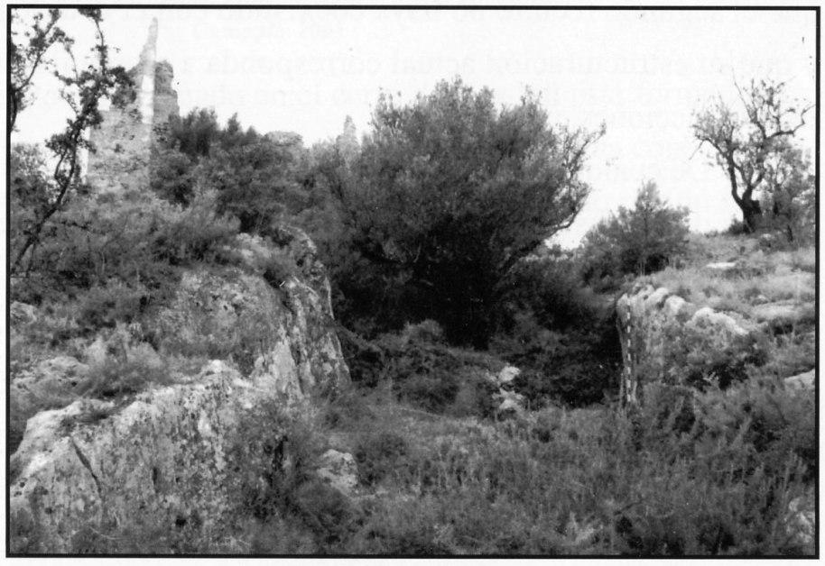 Fig. 29. Foso