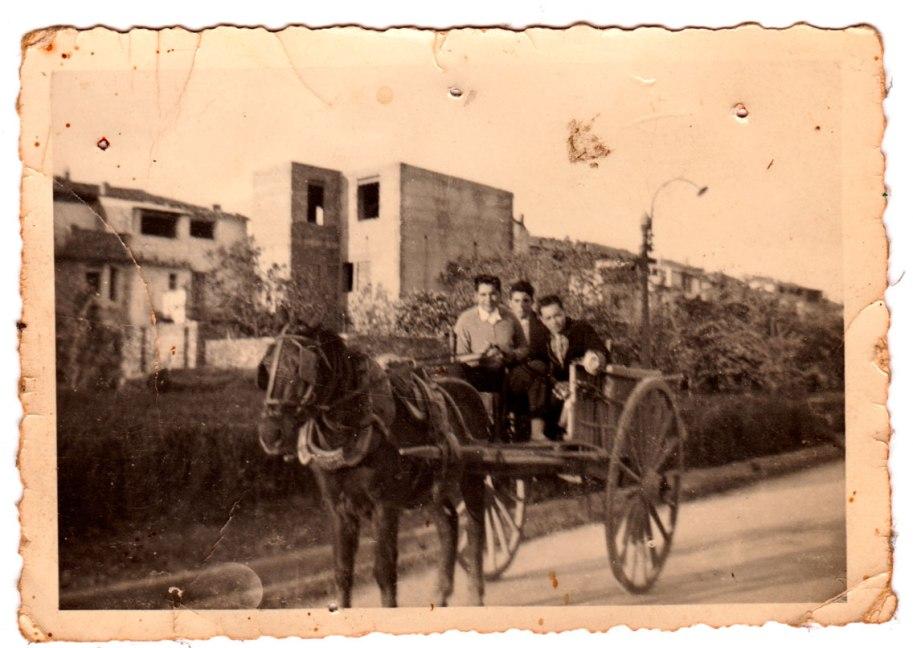 Tres xiquets mudats a cavall d'un carro per la carretera. Vegeu l'extensió dels cultius que la separaven del poble. Fixeu-vos també en la precarietat de la farola que tenen darrere. Reconeixem, amb els ramals, a Joaquín de Músic, i a l'altre costat a, potser, Benjamín de Cagarnera. El del mig no hem pogut averiguar qui és.