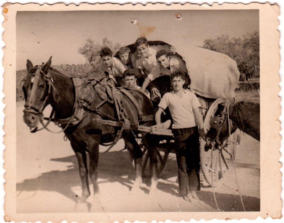 Foto datada l'un d'agost de 1957. Pareix que els xiquets estiguen de festa. Reconeixem, baix a la dreta, aguantant un matxet, a Bastero; dalt d'ell, a José Serreta, a l'esquerra d'este a José Seba, i baix a Miguel de Panxut.