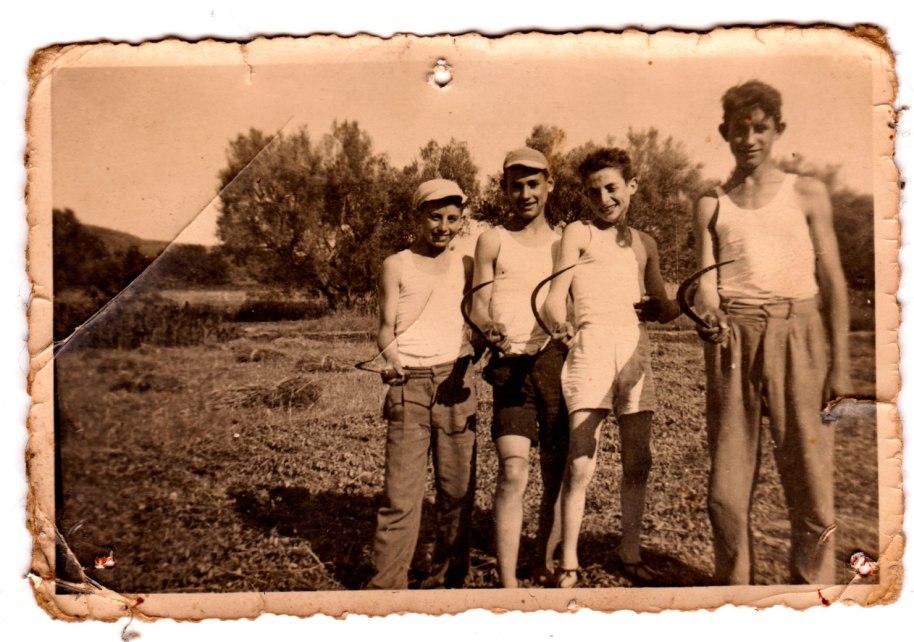 Les fotos se solen fer quan es va de festa, però de vegades també mostren a la gent treballant. En esta imatge, un grup de xiquets preadolescents que estan segant blat. D'esquerra a dreta són Vicente Vilara, un desconegut, Benjamín de Cabedo i, el més alt, Vicente Pla.