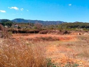 Clots de terra roja a la partida del Pinar