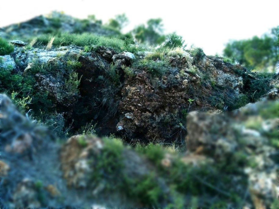 Clevills a la penya i afloraments de limonita