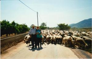 Continuació del viatge transhumant pels voltants d'Onda