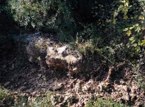 """Restes d'una probable construcció hidràulica dins del barranc. Coordenades:39º53'06.3""""N – 0º15'07.1"""""""