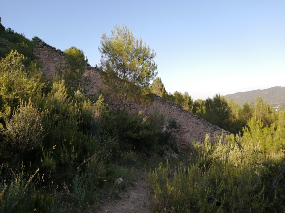 15 colmenar ermita