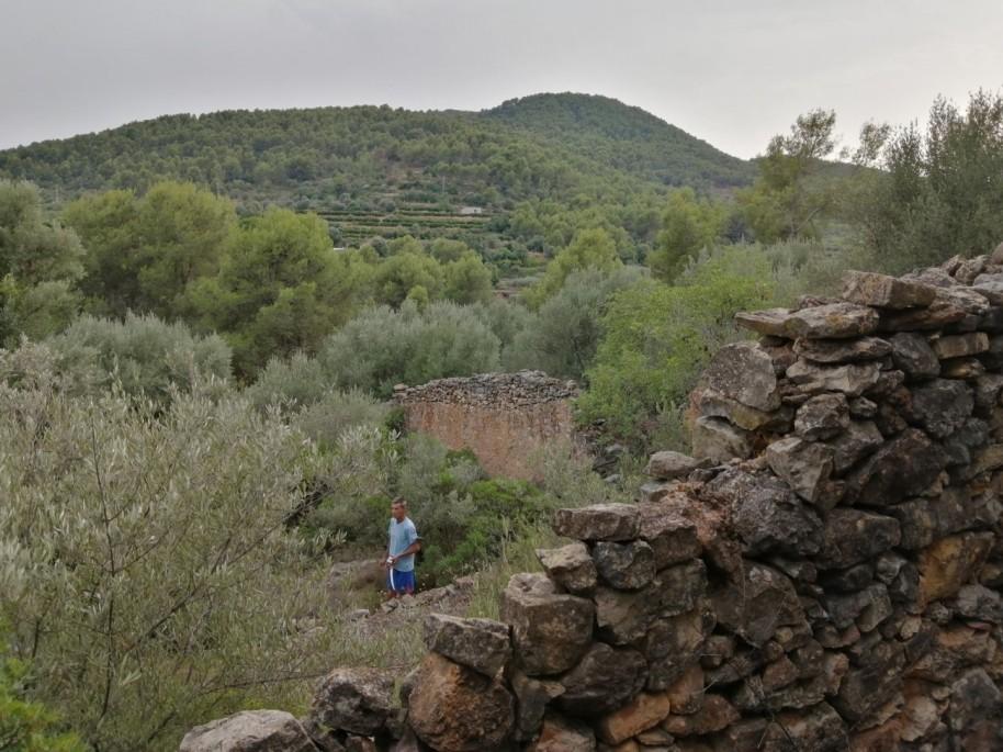 52 colmenar Barranc de Nules