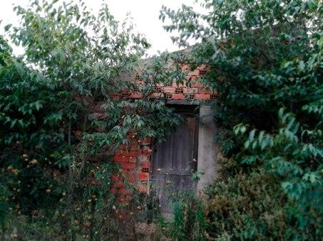 Corral-de-la-Sanca-3