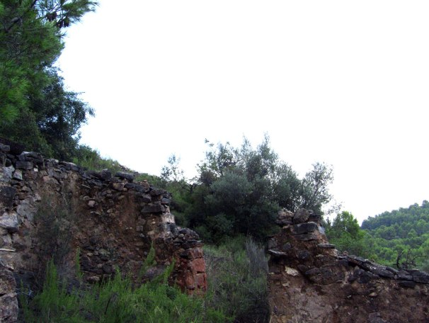 corral-de-Margalida-2