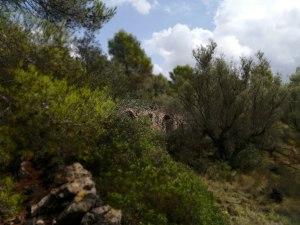 Corral-del-Barranc-de-N-7