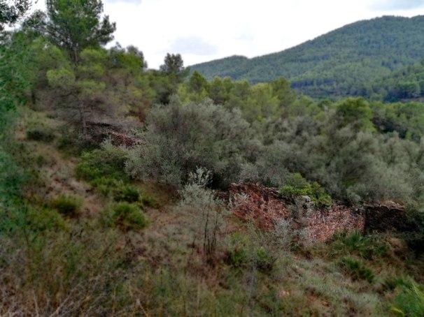 Corral-del-Barranc-de-N-8