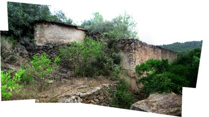 Panorama_corral-Margalida-2